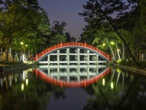 sanctuaire-sumiyoshi_ryusuke-komori
